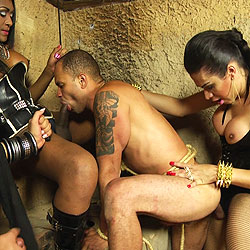 3 domme shemales punish a submissive.