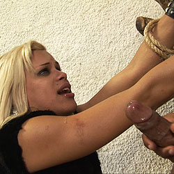 Taped and tied shemale gets fucked hard.