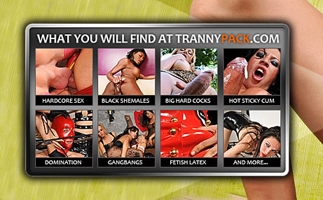 Tranny pack free videos